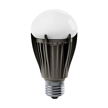 Earthbulb® 12 W A19 Omni Directional LED Bulb, Warm White