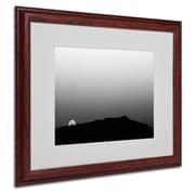 Trademark Fine Art 'Goodbye Sweet Appetite' 16 x 20 Wood Frame Art