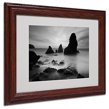 Trademark Fine Art 'Rodeo Beach I Black and White' 11