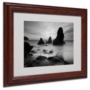 """Trademark Fine Art 'Rodeo Beach I Black and White' 11"""" x 14"""" Wood Frame Art"""