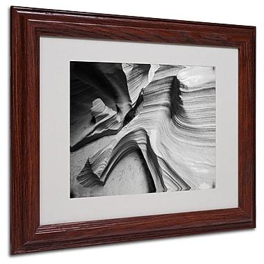 Trademark Fine Art 'Snake Canyon' 11