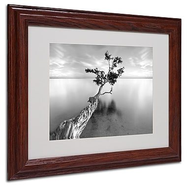 Trademark Fine Art 'Water Tree XIII' 11