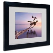 Trademark Fine Art 'Water Tree XV'