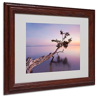 Trademark Fine Art 'Water Tree XV' 11