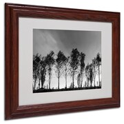 "Trademark Fine Art 'Xochimilco' 11"" x 14"" Wood Frame Art"