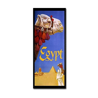 Trademark Fine Art 'Egypt Camel' 18