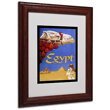 Trademark Fine Art 'Egypt Camel' 11