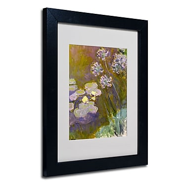 Trademark Fine Art 'Waterlilies and Agapanthus'