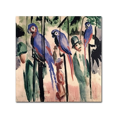 Trademark Fine Art 'Blue Parrots' 35