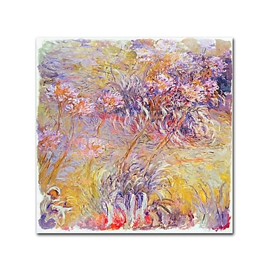 Trademark Fine Art 'Flower Impressions' 18