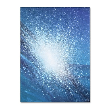 Trademark Fine Art 'Sea Picture VI' 24