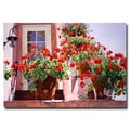 Trademark Fine Art 'Geraniums on the Stairs' 30in. x 47in. Canvas Art