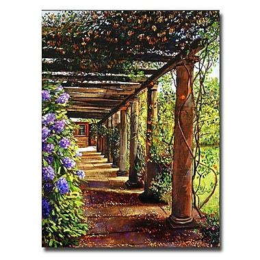 Trademark Fine Art 'Pergola Walkway' 18