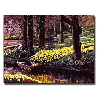 Trademark Fine Art 'Daffodil Park' 35