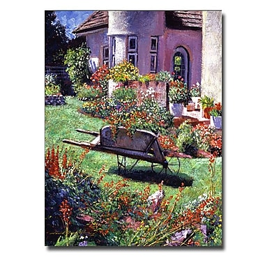 Trademark Fine Art 'Color Garden Impression'