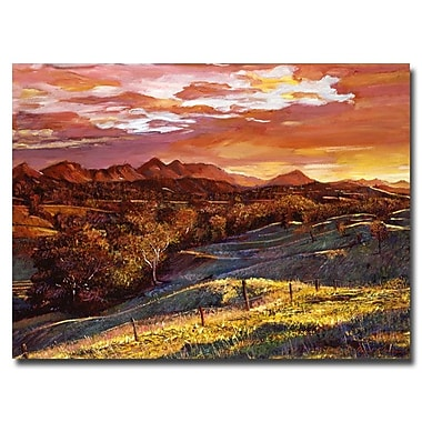 Trademark Fine Art 'California Dreaming' 26