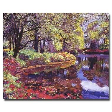 Trademark Fine Art 'Reflections of Azalea Blooms' 26