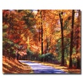 Trademark Fine Art 'Along the Winding Road' 35in. x 47in. Canvas Art