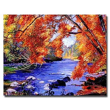 Trademark Fine Art 'Vermont River' 35