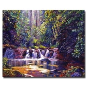 "Trademark Fine Art 'Foaming Water Forest' 26"" x 32"" Canvas Art"