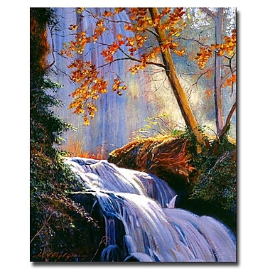 Trademark Fine Art 'Rushing Waters'