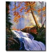 "Trademark Fine Art 'Rushing Waters' 35"" x 47"" Canvas Art"