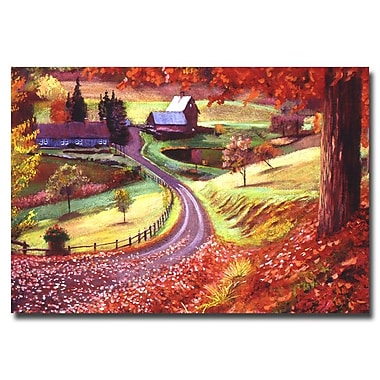 Trademark Fine Art 'Road to Maplegrover Farms' 30