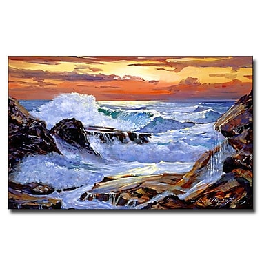Trademark Fine Art 'Storm on the Irish Coast' 18