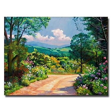 Trademark Fine Art 'The Tuscany Hills'