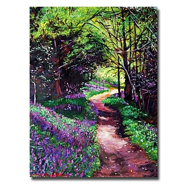 Trademark Fine Art 'Lavendar Lane'
