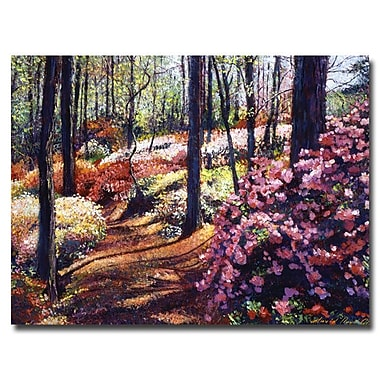 Trademark Fine Art 'Azalea Forest'