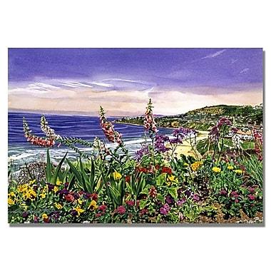 Trademark Fine Art 'Laguna Niguel Garden' 30