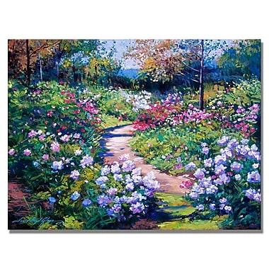 Trademark Fine Art 'Natures Garden'