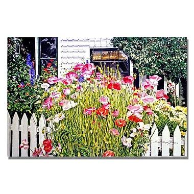 Trademark Fine Art 'Poppies on Niagara' 22