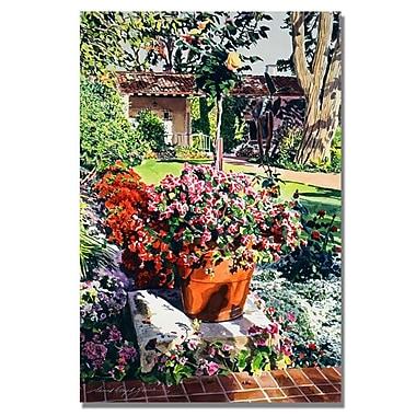 Trademark Fine Art 'Santa Barbra Garden'