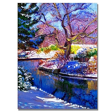 Trademark Fine Art 'Snowy Park'