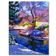 "Trademark Fine Art 'Snowy Park' 35"" x 47"" Canvas Art"