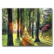 "Trademark Fine Art 'Forest of Enchantment' 24"" x 32"" Canvas Art"
