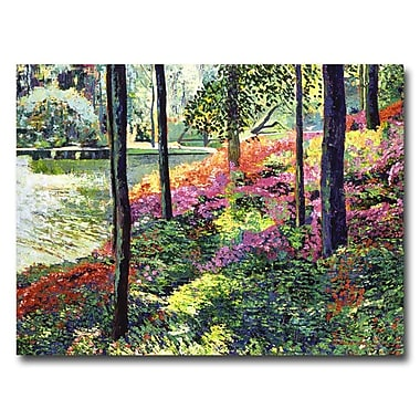 Trademark Fine Art 'Azalea Forest Grove'