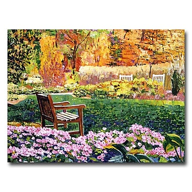 Trademark Fine Art 'Secret Garden Chair'
