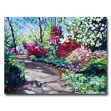 Trademark Fine Art 'Azalea Pathway'