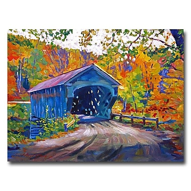 Trademark Fine Art 'Fall Comes to Downer VT'