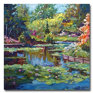 Trademark Fine Art 'Serenity Pond' 24