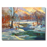 Trademark Fine Art 'Approaching Winter' 35 x 47 Canvas Art