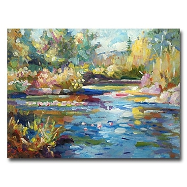 Trademark Fine Art 'Summer Pond'
