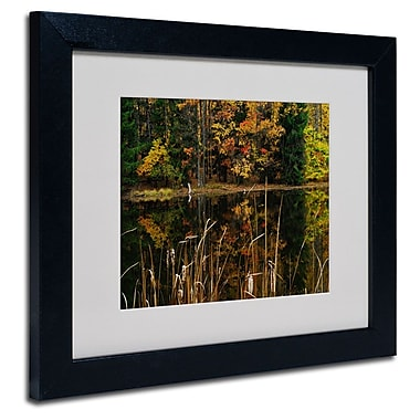 Trademark Fine Art 'Beautiful Memory'