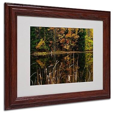 Trademark Fine Art 'Beautiful Memory' 11