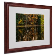 "Trademark Fine Art 'Beautiful Memory' 16"" x 20"" Wood Frame Art"