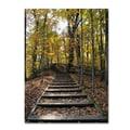 Trademark Fine Art 'Fall Stairway 2' 14in. x 19in. Canvas Art