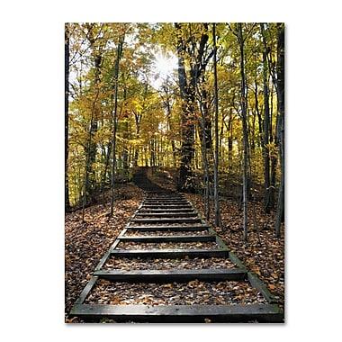 Trademark Fine Art 'Fall Stairway 2' 35